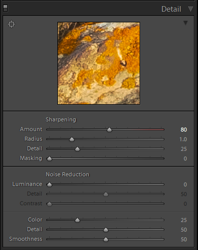 Detail panel adjustments in Lightroom