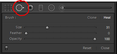 Spot removal tool in Lightroom Classic