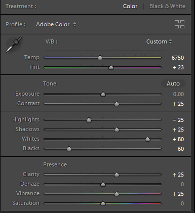 Lightroom settings for processing