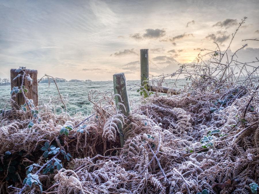 Winter morning landscape captured using my Olympus OMD EM10 camera