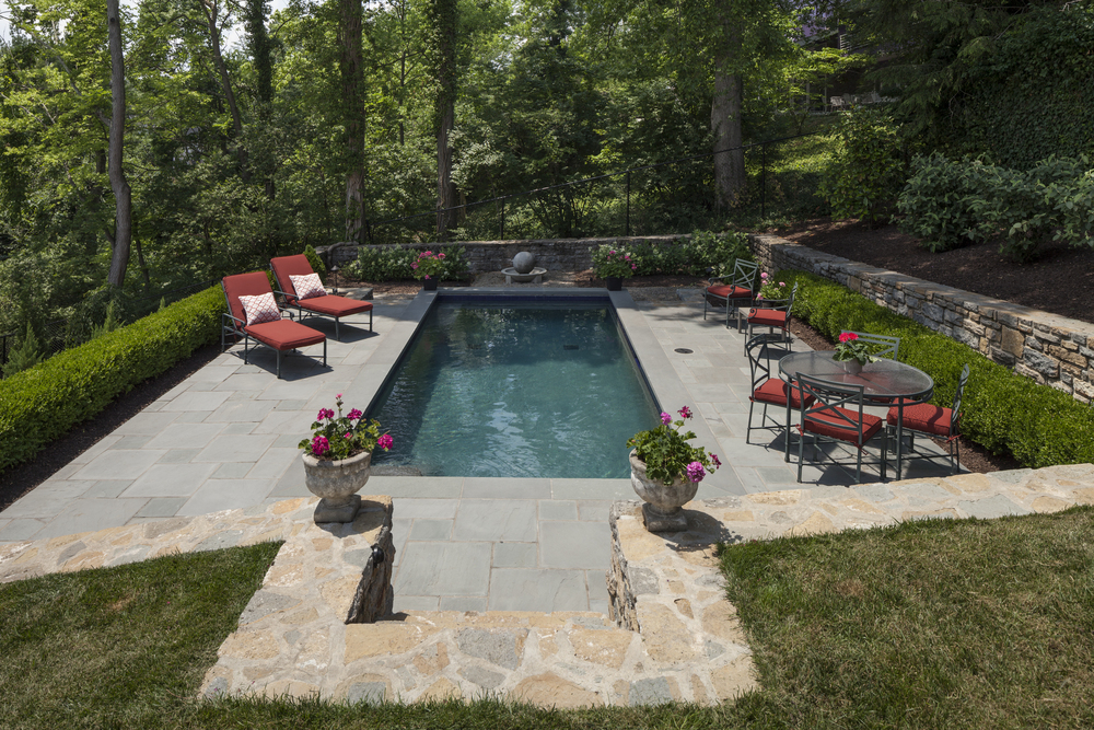 "These clients pointed to a terraced hillside and said ""Can we have a pool?"" and DIGS said 'Why not!"" Note: this boxwood hedge is acceptable per building codes in lieu of the mandatory fence."