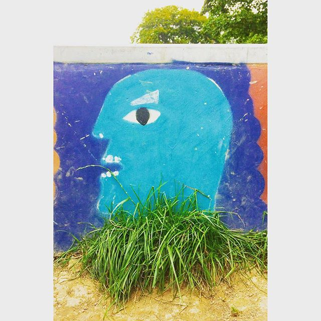 Is he angry or singing..... 🤔 Love his well placed grass ruff 😄📷 #graffiti #art #eyebrows #bluefaces #skatepark  #commercialphotography