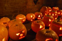 pumpkin party event pumpkins