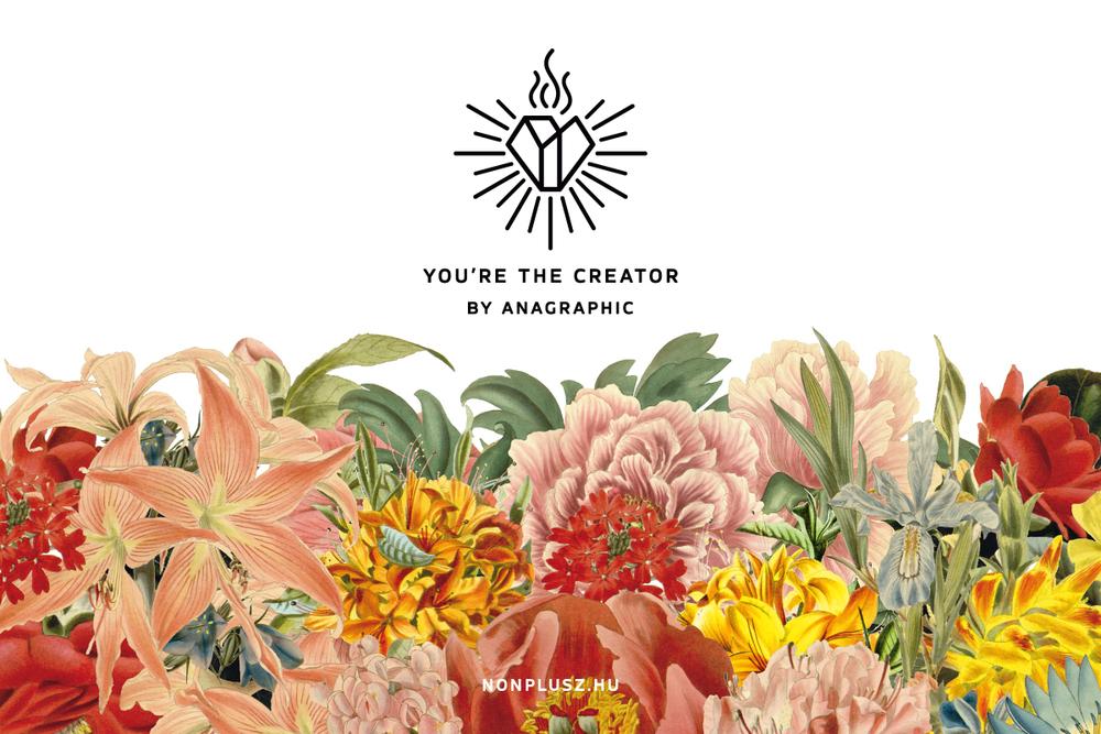 creator_1.jpg