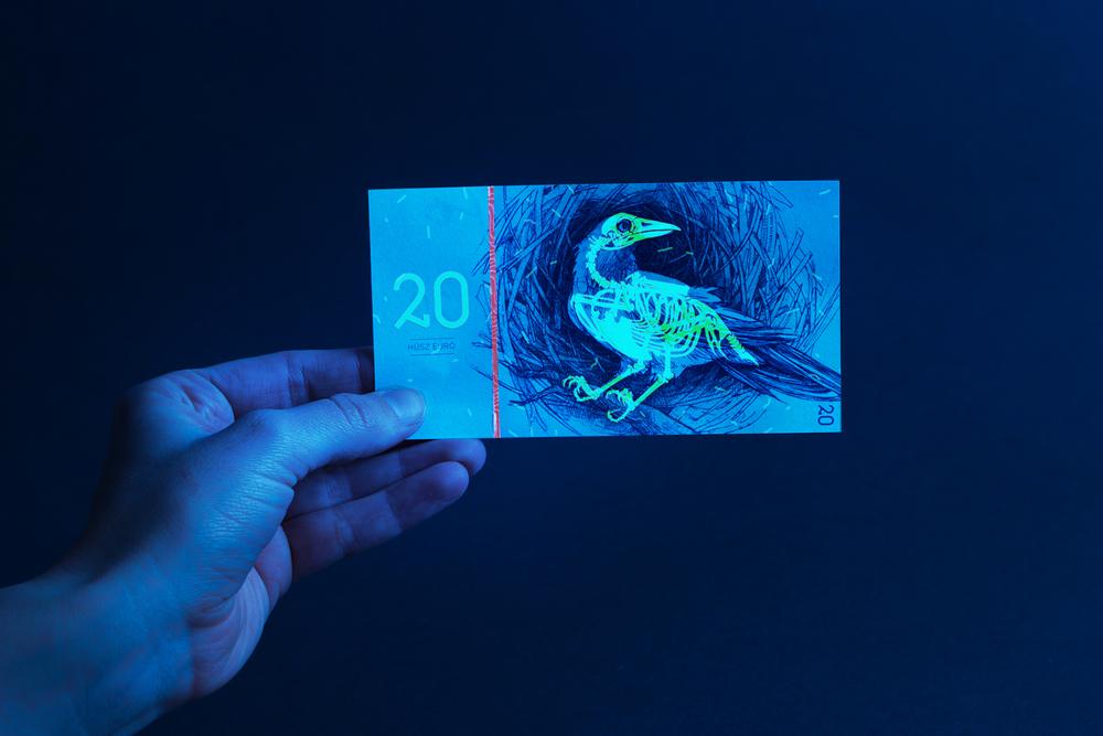 Hungarian Euro by Barbara Bernát 06.jpg