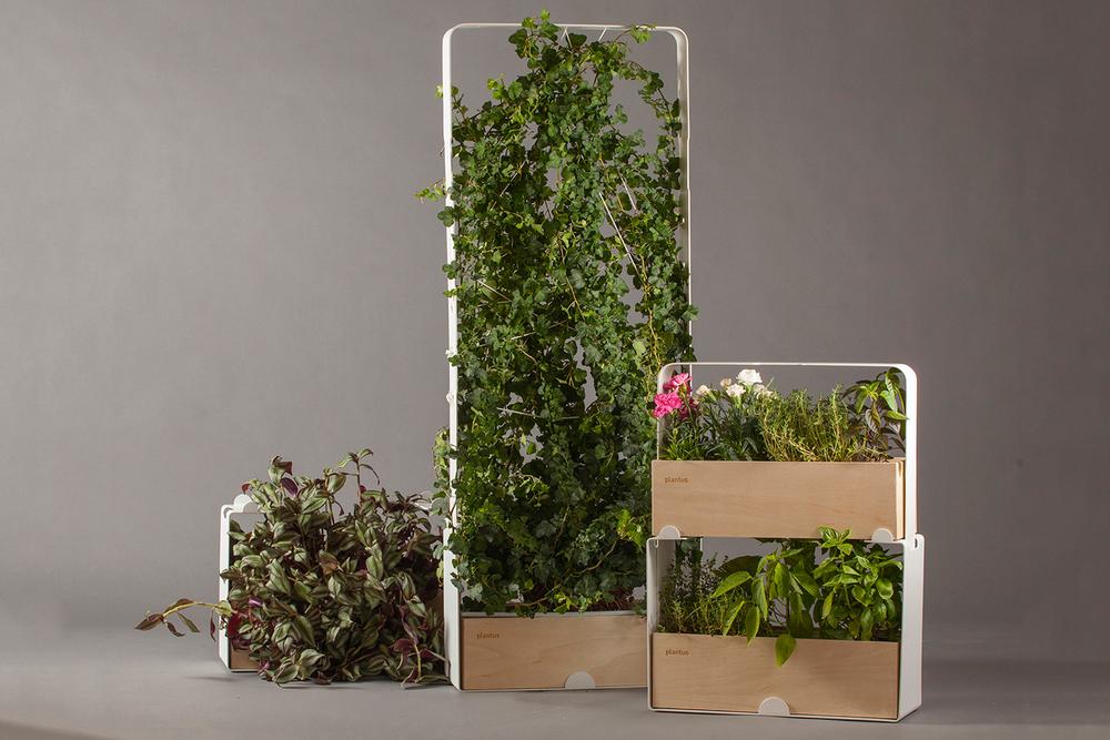 Indoor urban gardening - Plantus planters 06.jpg