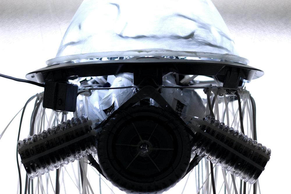 hellodesign-medusa-08.jpg