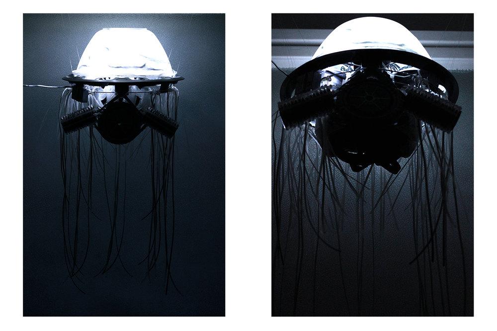 hellodesign-medusa-09.jpg