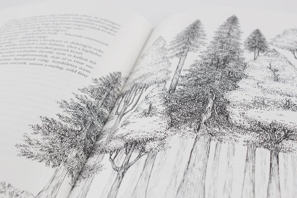 hellodesign-Narnia_Kronikai-13.jpg.jpg