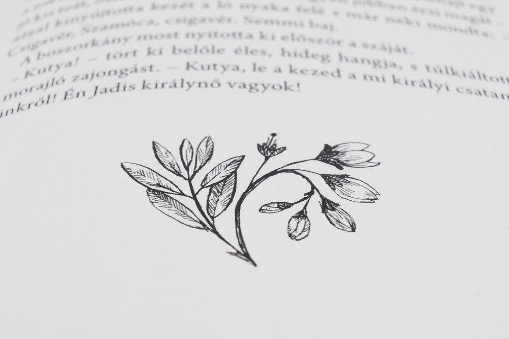 hellodesign-Narnia_Kronikai-16.jpg.jpg