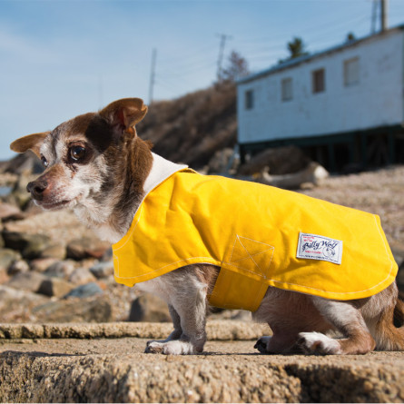 billy-wolf-nyc-dog-Milly-Waterproof-Jacket-02-445x445.jpg