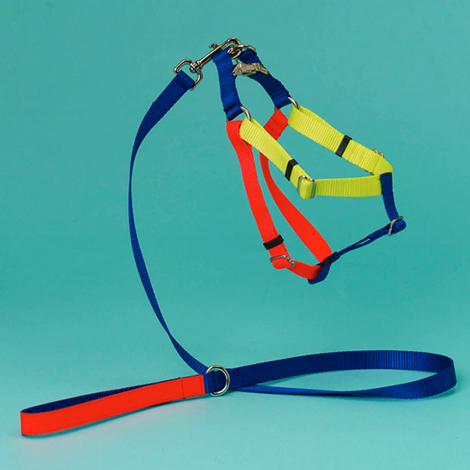 dog_harness_3.jpg