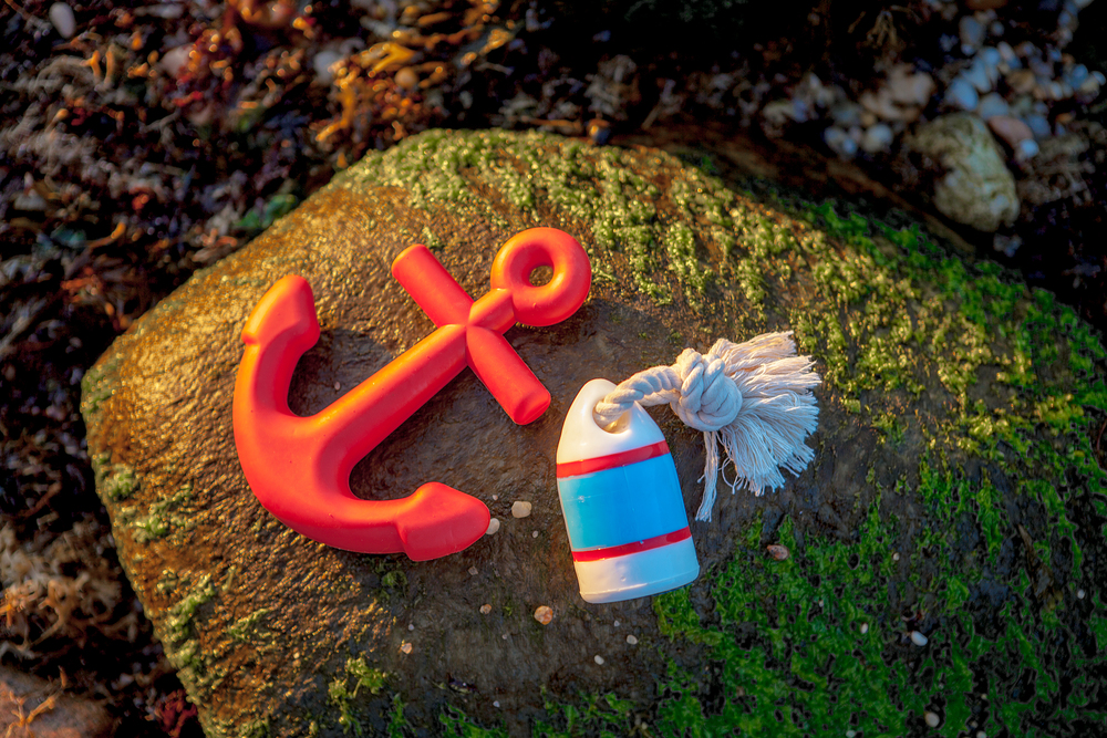 WAGGO | Anchors Aweigh Toy + WAGGO | Floats My Boat Buoy Toy