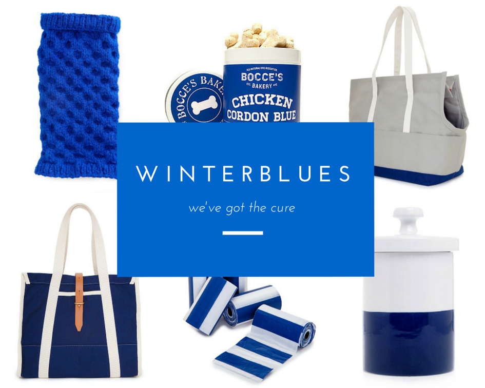 DOG & CO. | Winter Blues Gift Guide