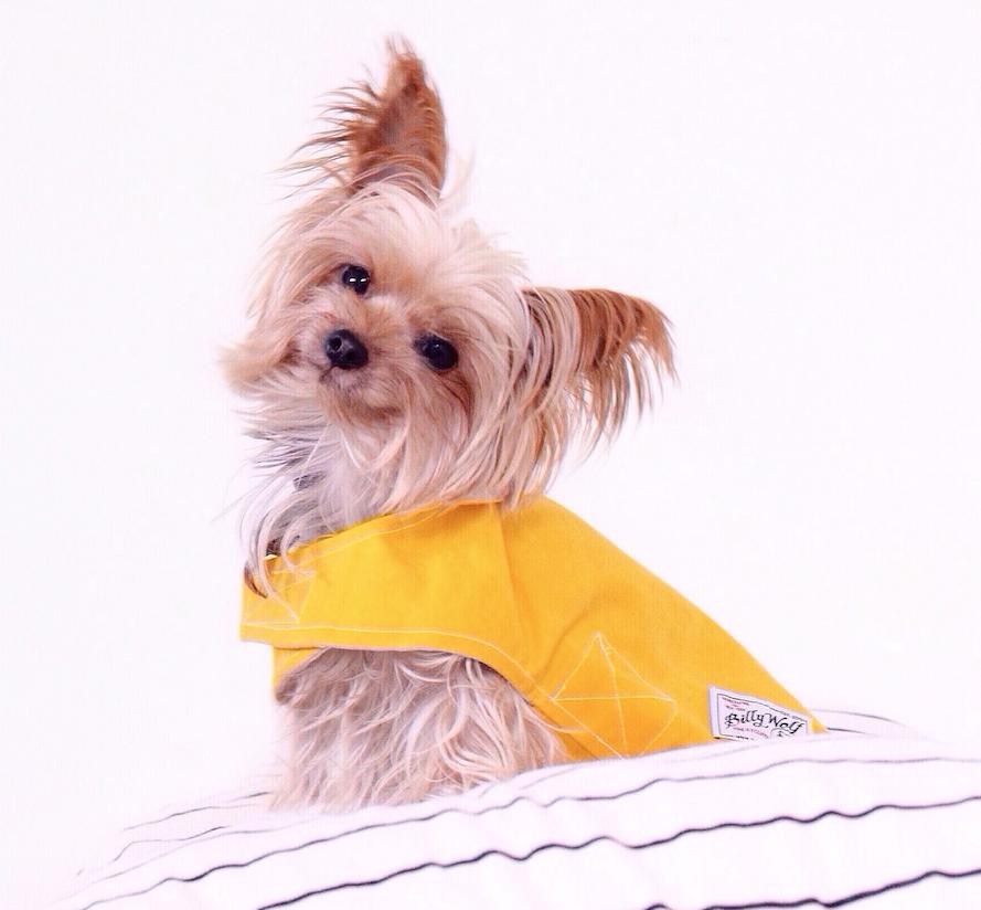 BILLY WOLF | Milly Waterproof Jacket