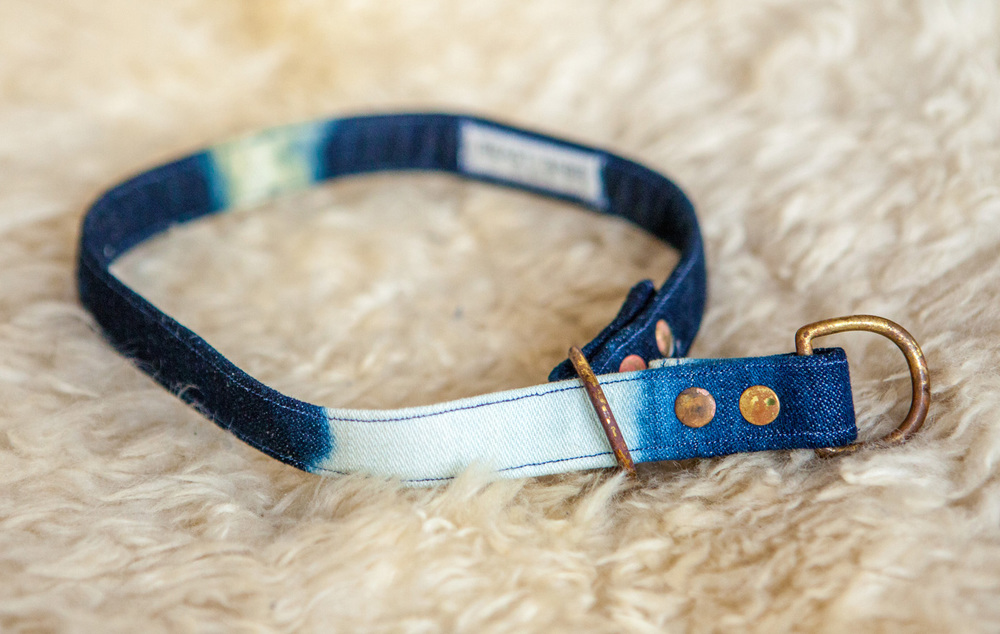BEAST + BABE | Outer Space Cadet Collar & Lead