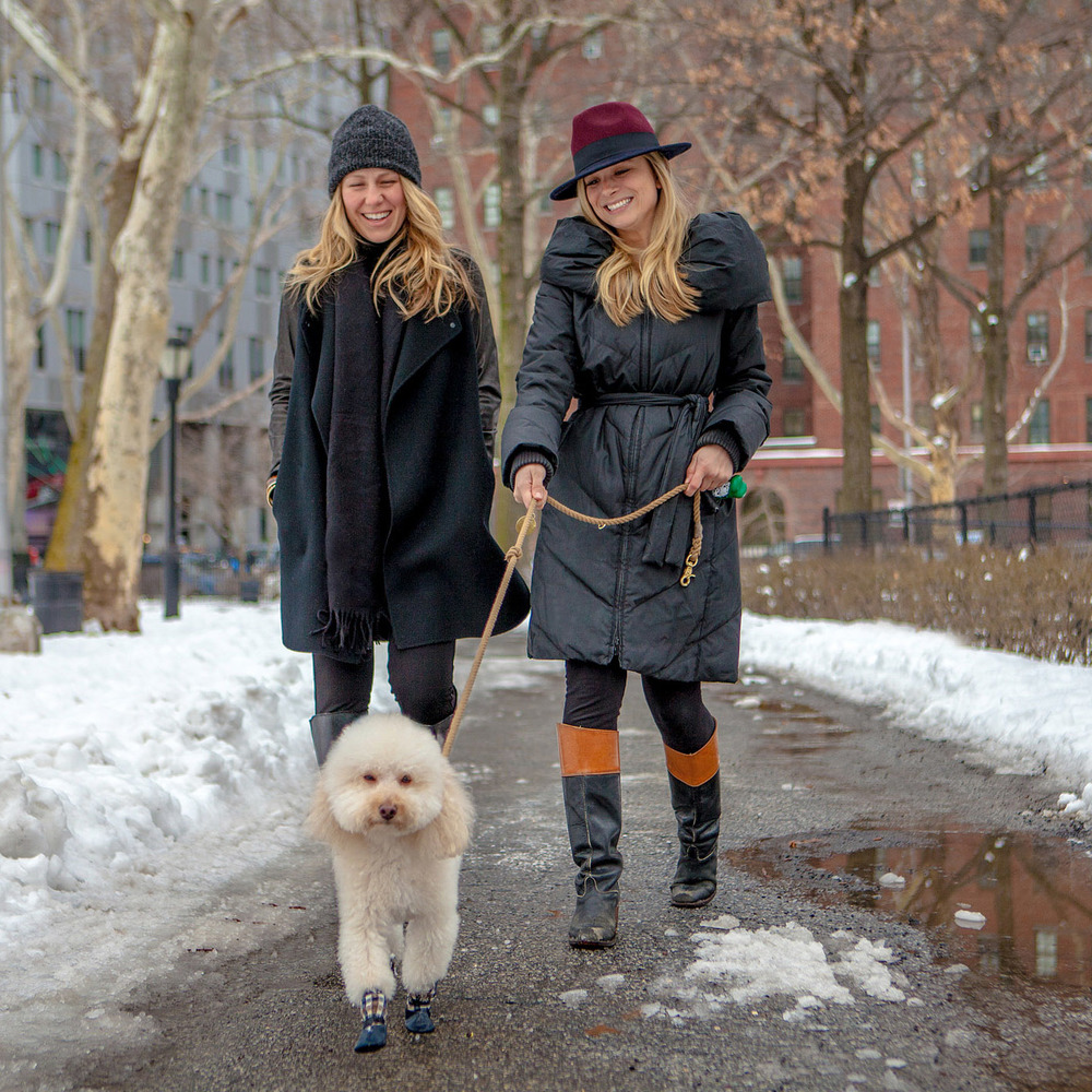DOG & CO. | B E S T Friends - Tess, Christy, + Joey