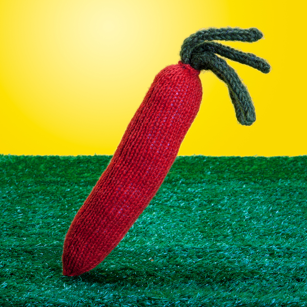 WARE of the DOG | Hand-Knit Carrot