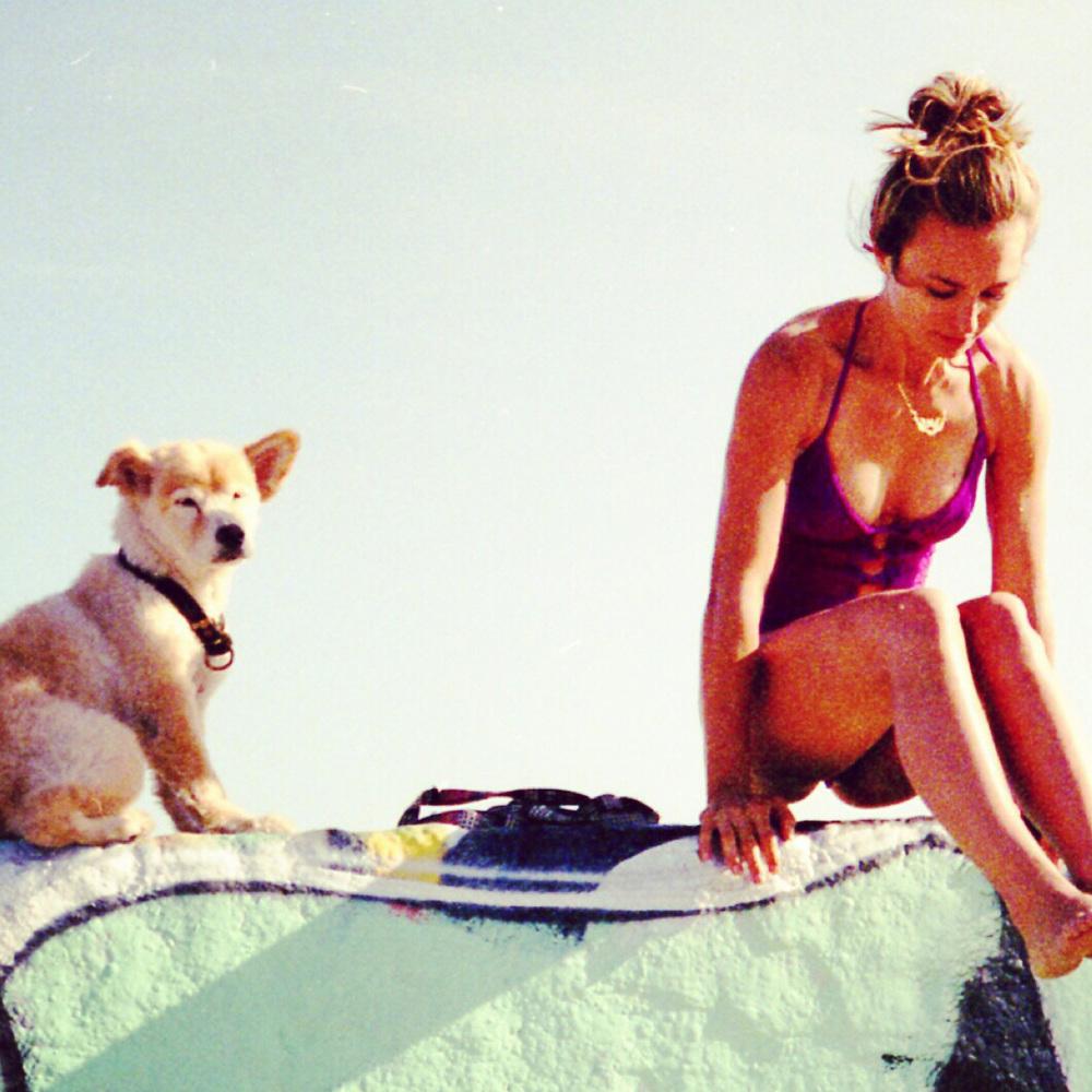 DOG & CO. | Beast + Babe