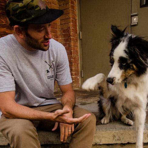 DOG & CO. | B E S T Friends