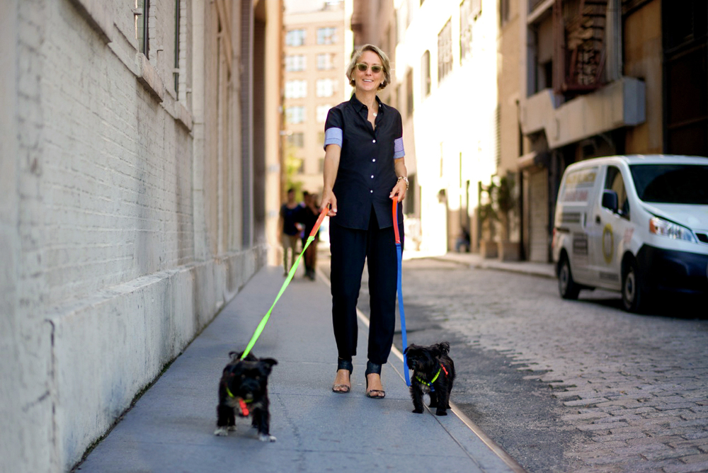 Edie & Clair in the WARE of the DOG | Nylon Color Block Harnesses + Leads.   (photo :  The Dogist)