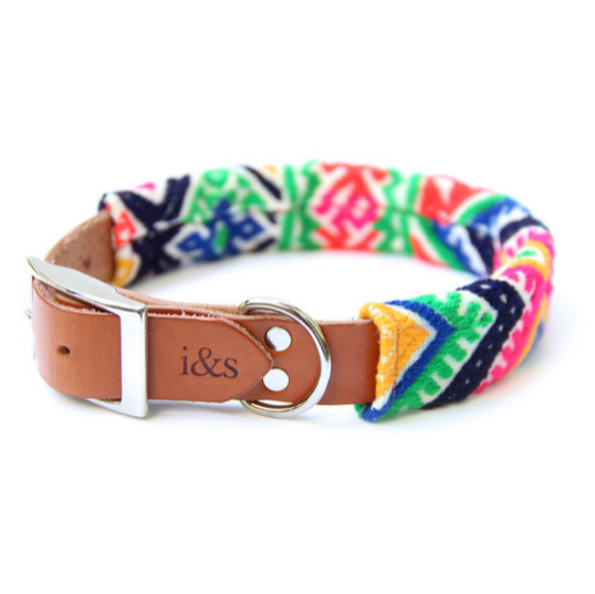 DOG & CO. | Ike & Stella