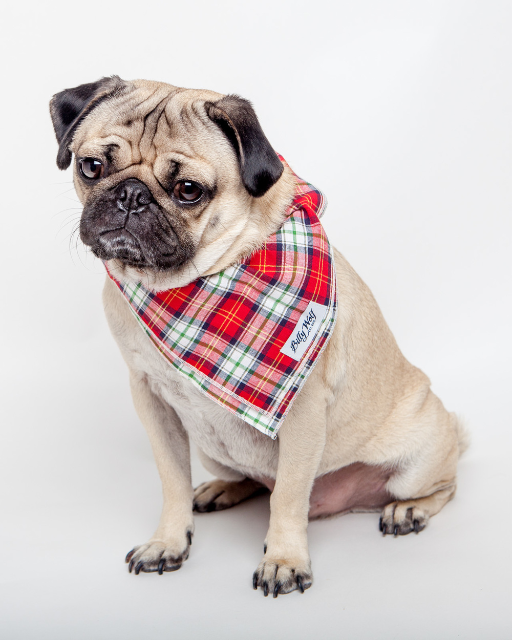 BILLY WOLF | Henry Bandana