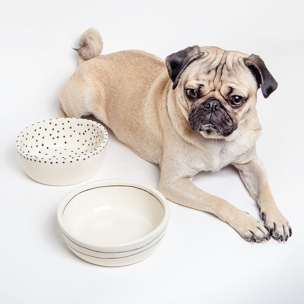 btw CERAMICS | Dots + Stripes Dog Bowls