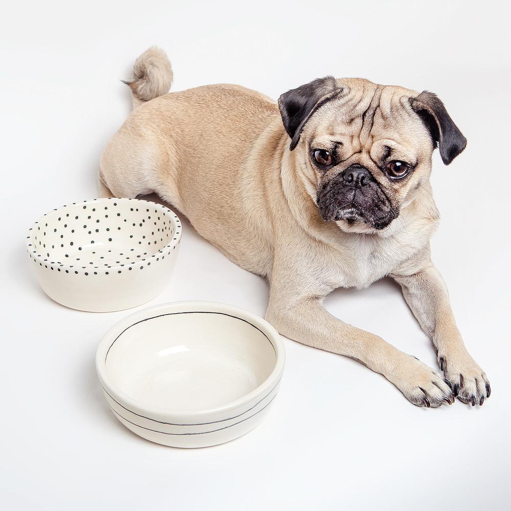 btw CERAMICS   Dots + Stripes Dog Bowls