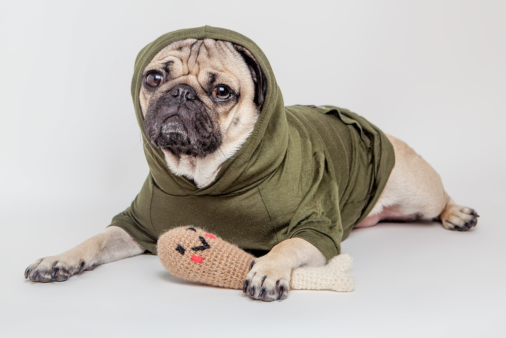 MAX-BONE | Max Hoodie   +   WARE of the DOG | Hand Knit Drumstick