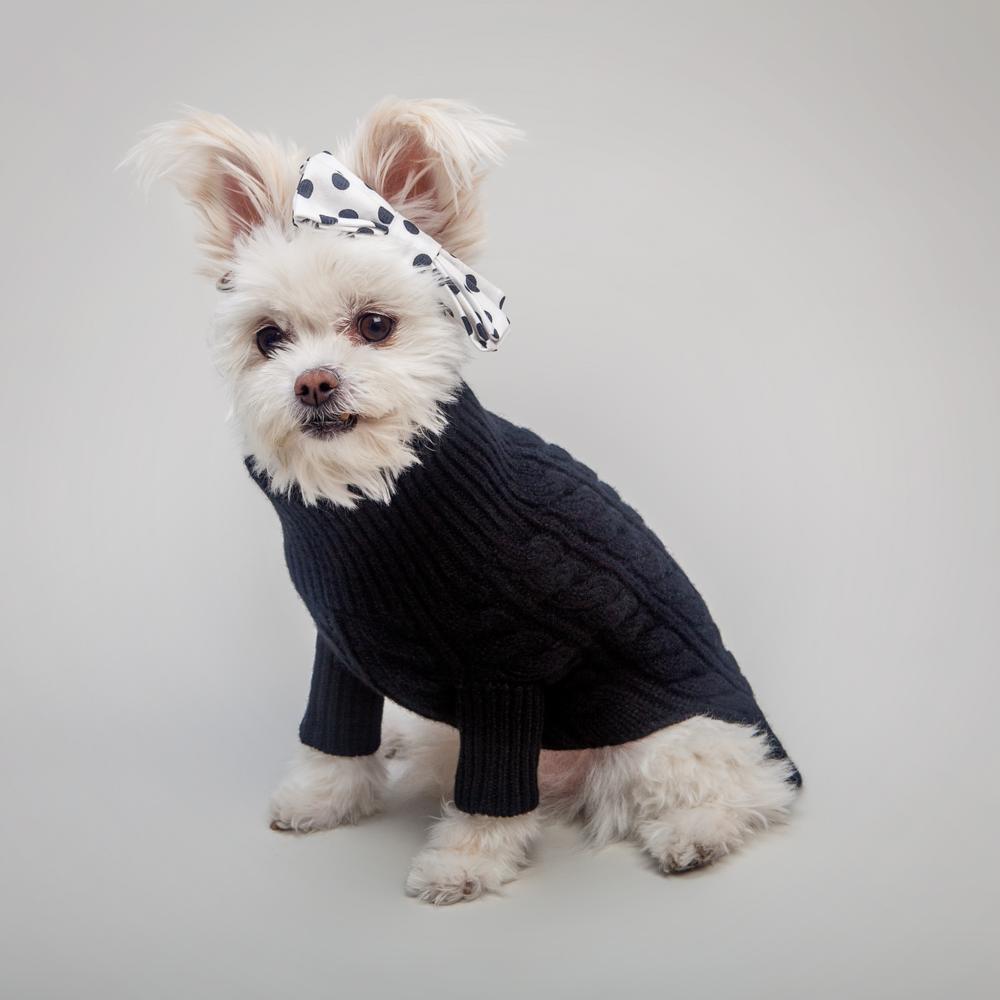 RUBY RUFUS | Kora Cable Knit Sweater + MAX-BONE | Cruella Bow Tie Collar