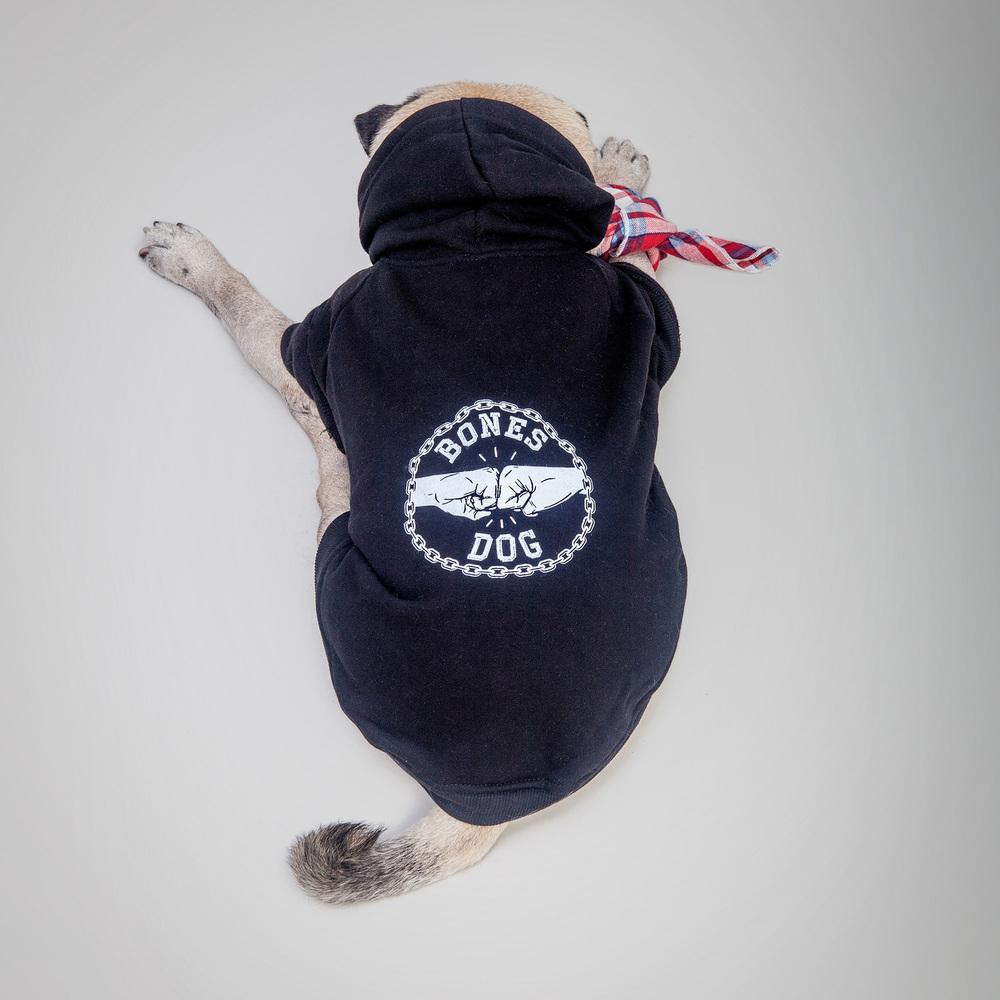PET HAUS | Bones Dog Hoodie + BILLY WOLF | Hank Bandana