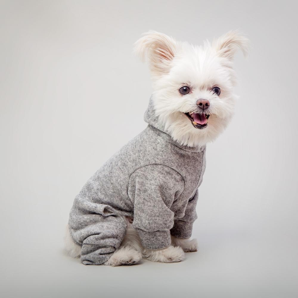 DOG & CO. | Dog Pyjama in Grey Knit