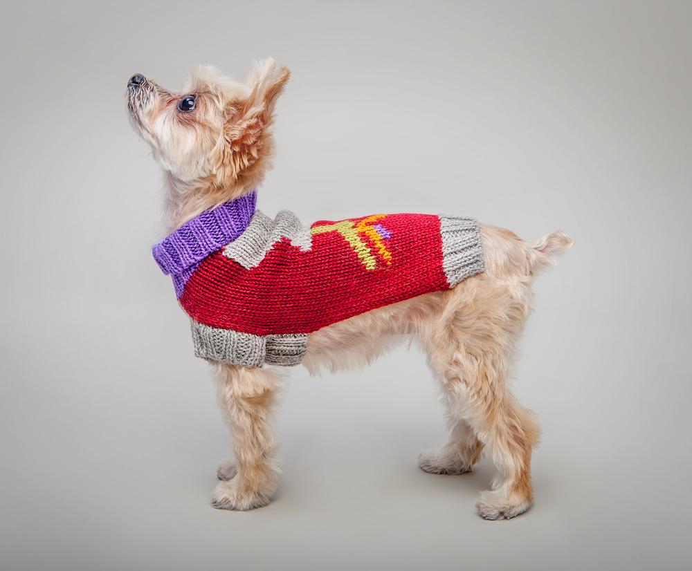 DUSEN DUSEN | Ceramics Dog Sweater