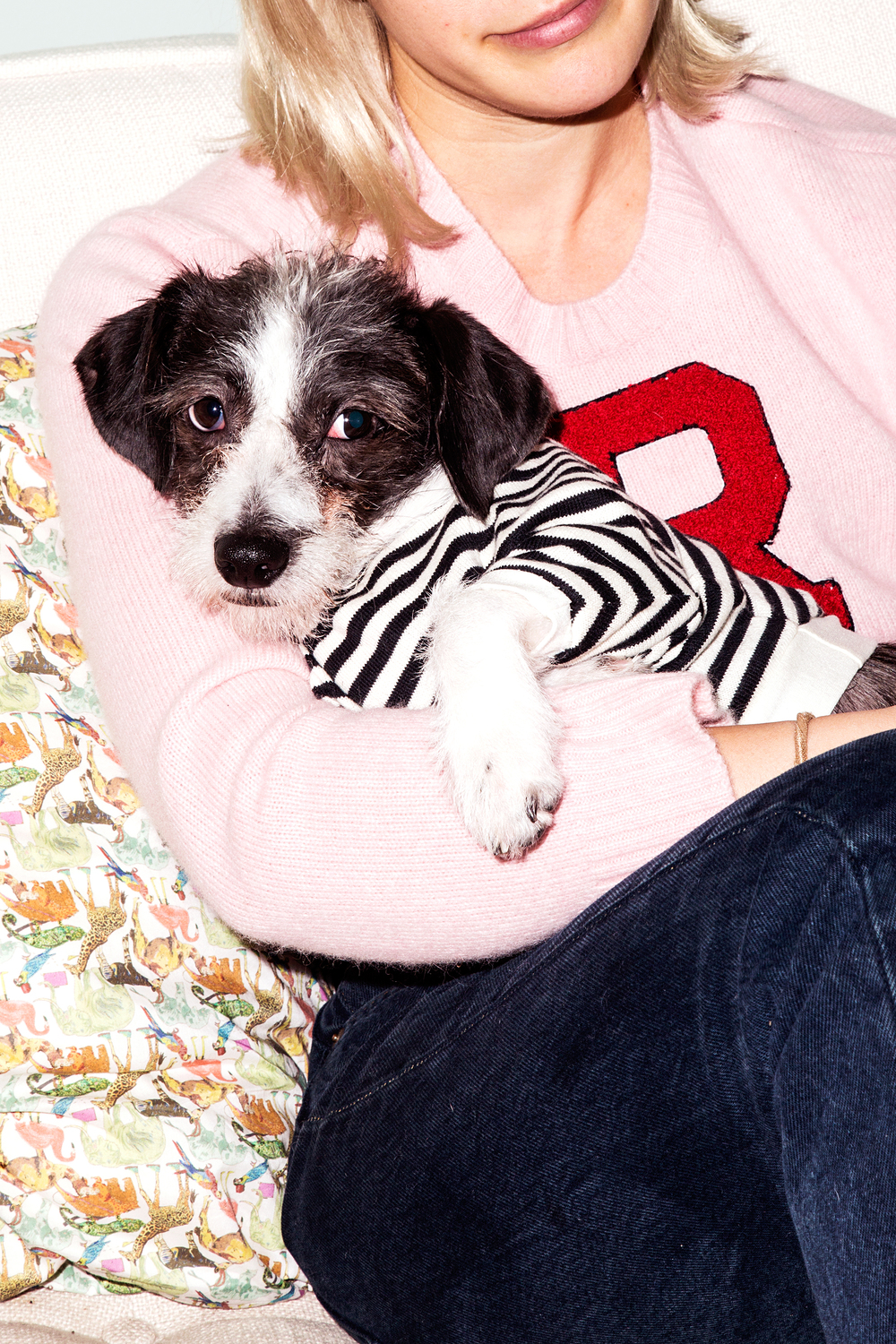 DOG & CO. | Striped Knit Pullover (coming soon)