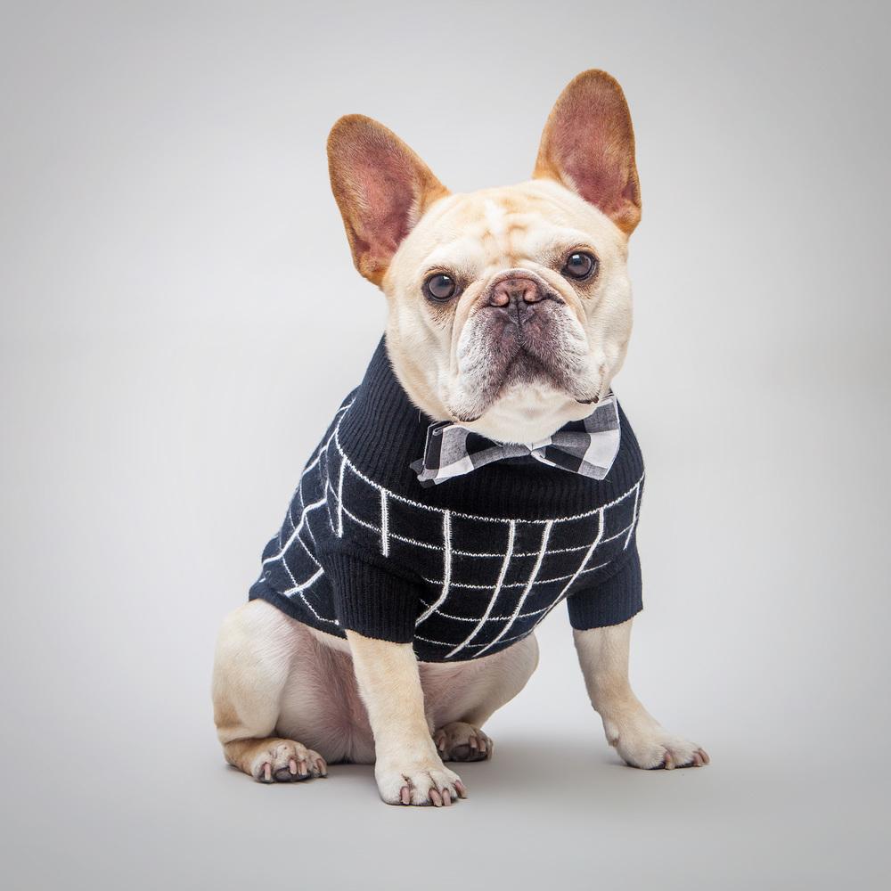 RUBY RUFUS | Tiggy Square Sweater + MAX-BONE | Harrison Bow Tie Collar