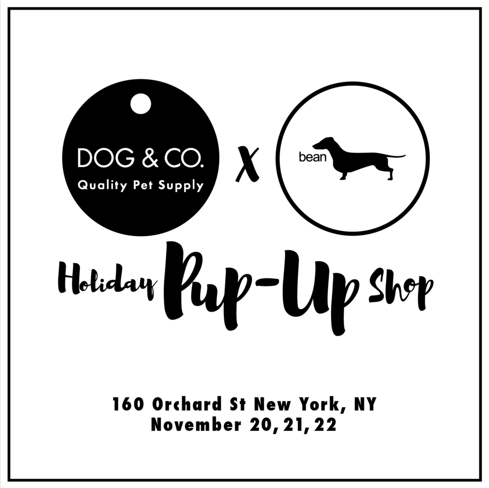 DOG & CO. | PUP-UP SHOP