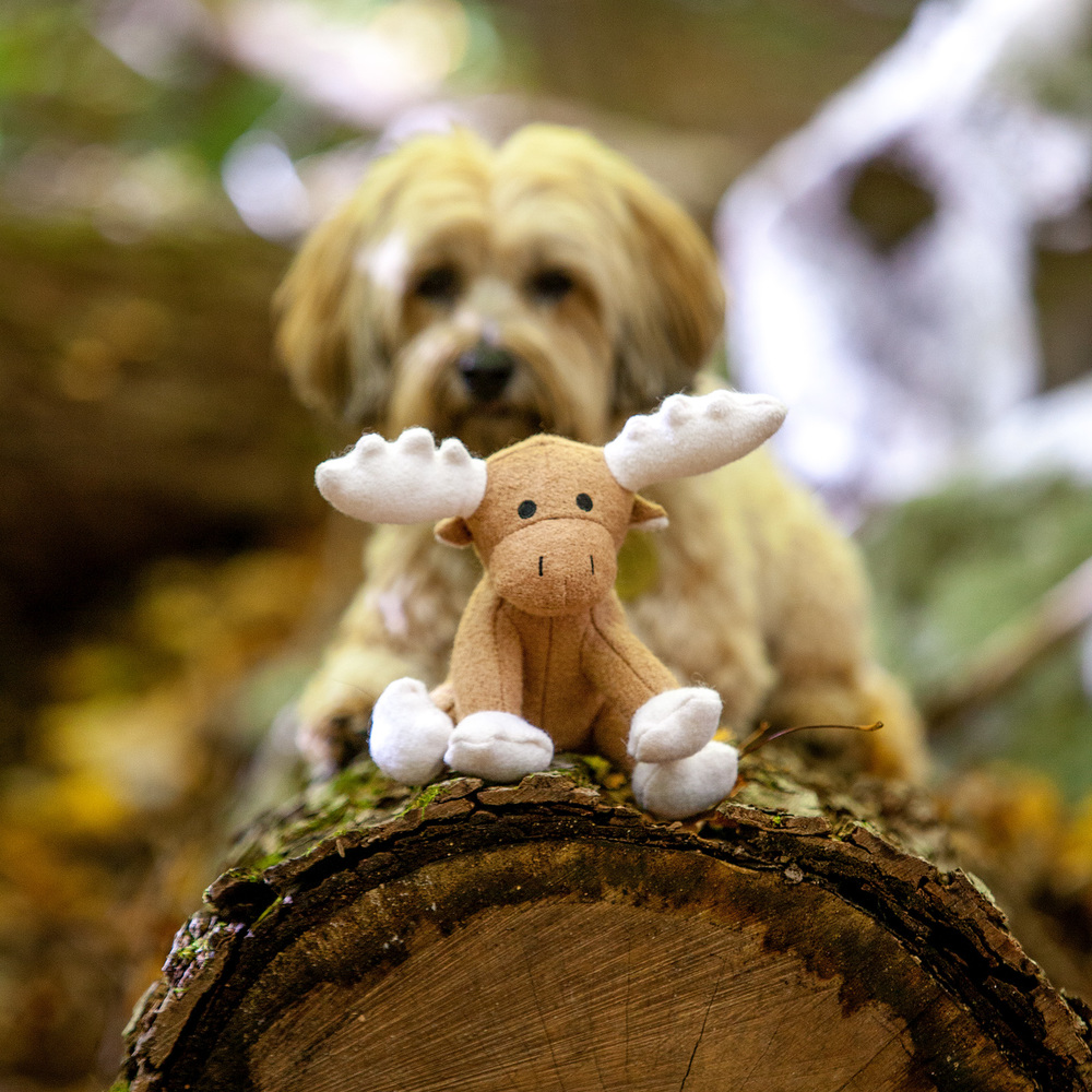 JAX and BONES | White Woolie Moose Toy