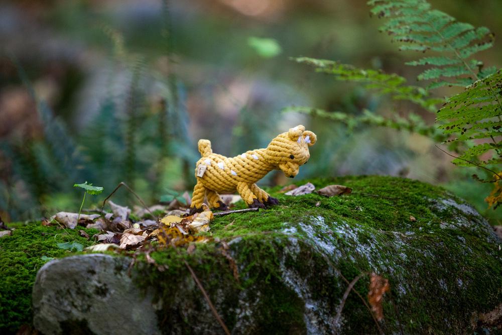 JAX and BONES | Daphne Deer Rope Toy