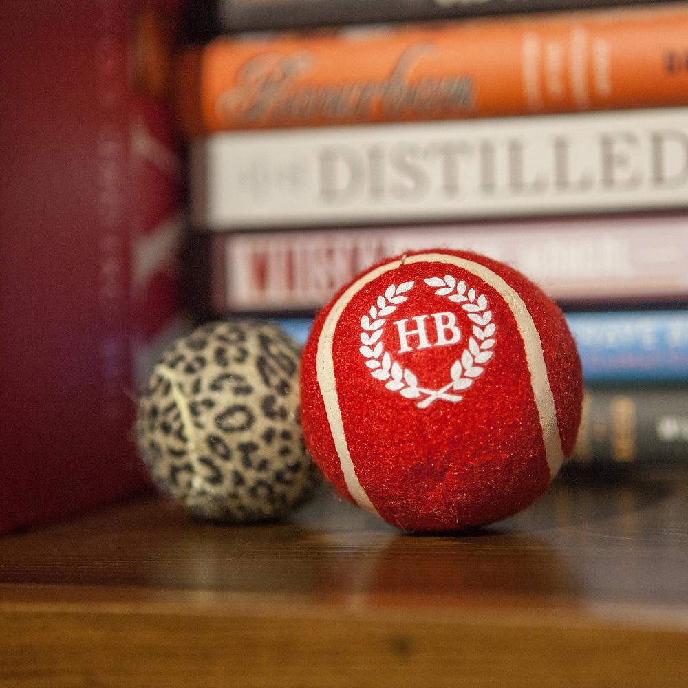 HARRY BARKER | Leopard Play Balls