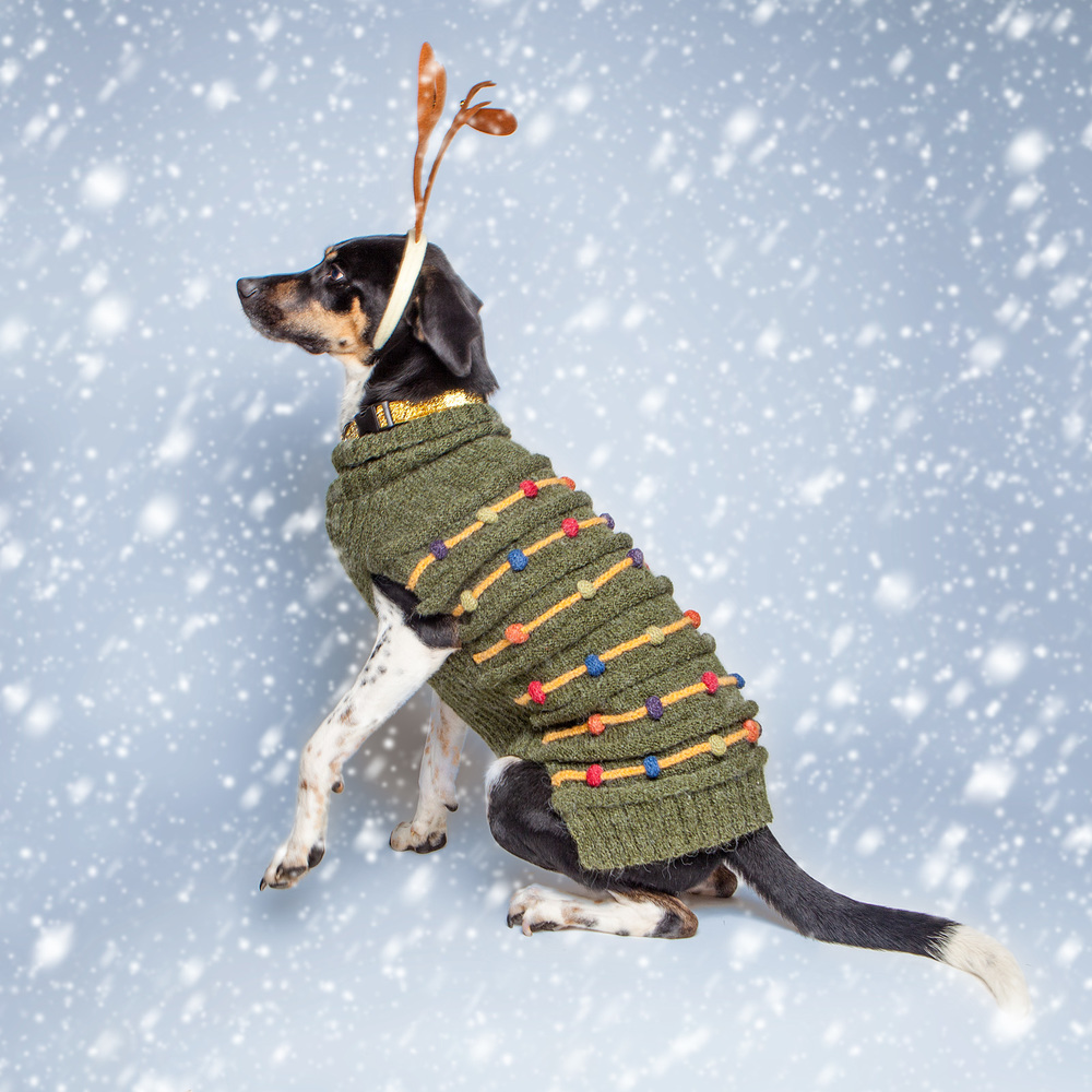 DOG & CO. | Howliday Tree Sweater