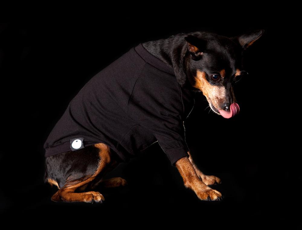 DOG & CO. | Little Black T-Shirt