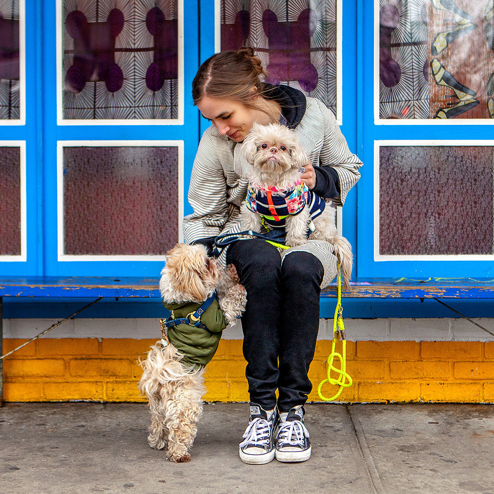 HUMAN + HOUND | Samantha + Ginger & Presley
