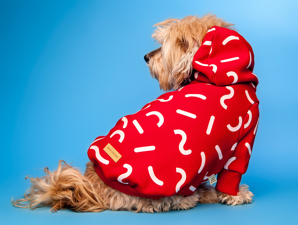 HUTS and BAY | Hoody in Red Jelly Print