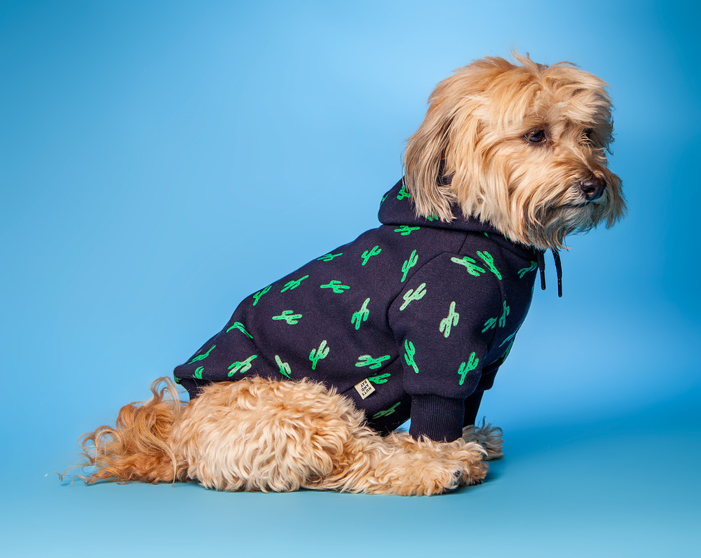 HUTS and BAY | Hoody in Navy Cactus