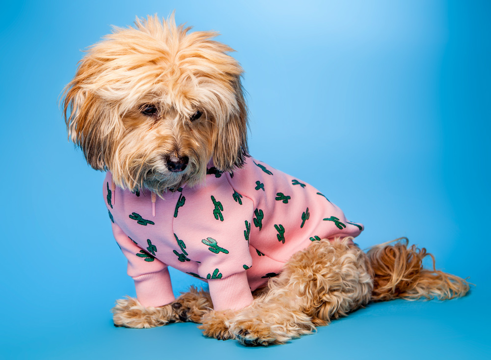 HUTS and BAY |Hoody in Pink Cactus