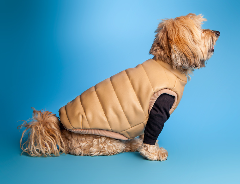 HUTS and BAY | Padded Leather Vest in Camel over the DOG & CO. | Little Black TShirt