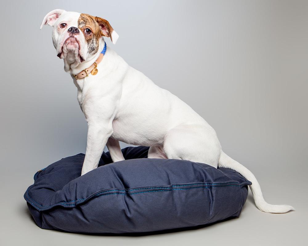 BELLA in the DEN DOG BEDS | Dog Bed in Steel Denim