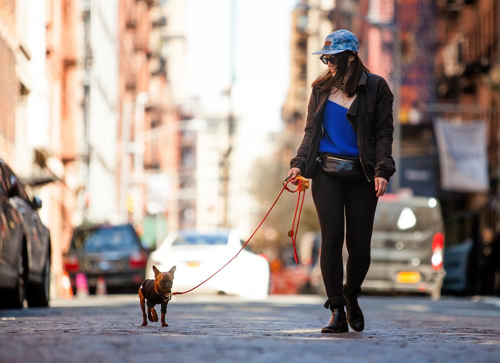 DOG & CO. | Human + Hound - Jes + Hey Gizmo