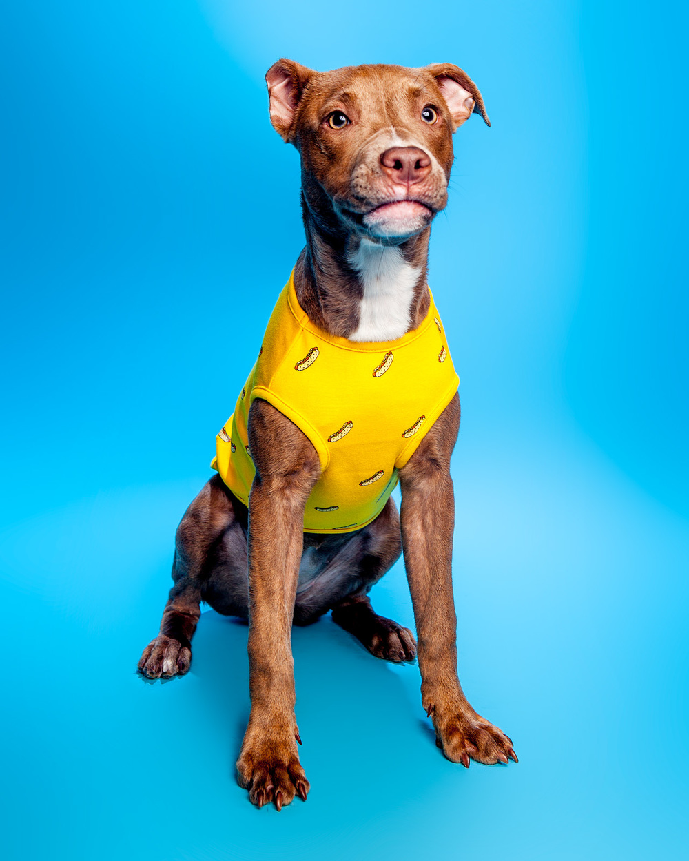HUTS + BAY | Hot Dog Sleeveless in Yellow